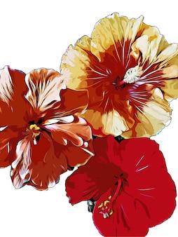 Fleurs d'hibiscus aquarelle