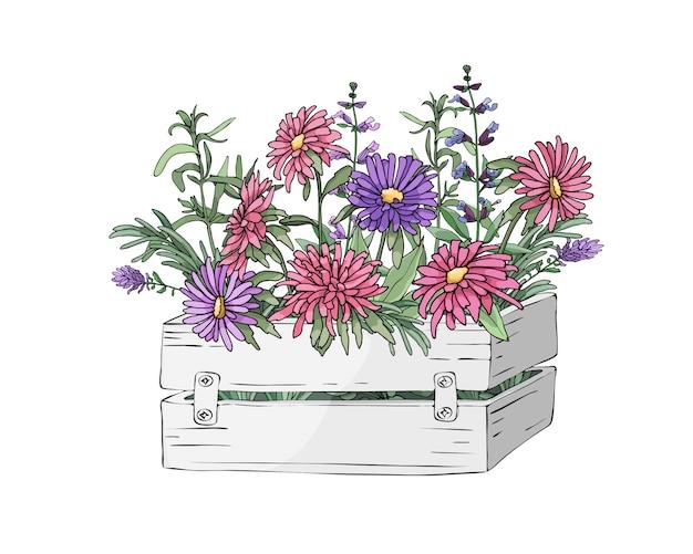 Fleurs de jardin de vecteur dans une boîte blanche en bois de jardin