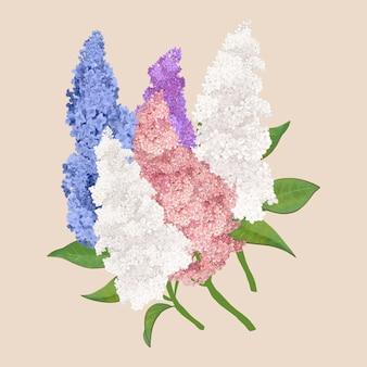 Fleurs lilas colorées