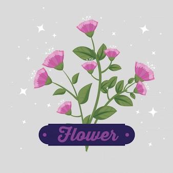 Fleurs avec pétales et feuilles