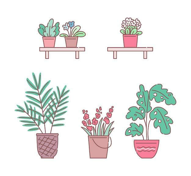 Fleurs et plantes en pots ensemble de croquis s isolé sur fond blanc. collection d'éléments de dessin animé de magasin de plantation et de fleuriste.