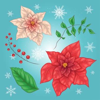 Fleurs de poinsettia et éléments floraux de noël
