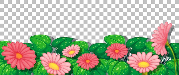 Fleurs roses avec des feuilles sur fond transparent