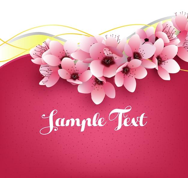 Fleurs de sakura sur le modèle rose
