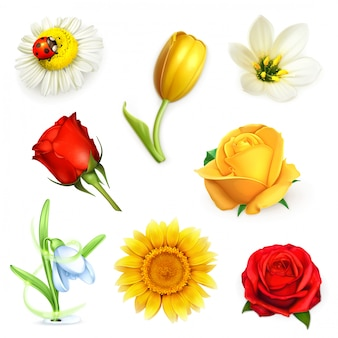 Fleurs, set vector