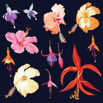 Fleurs tropicales dans un style aquarelle