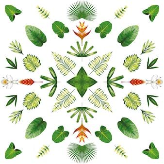Fleurs tropicales symétriques et feuilles blanches
