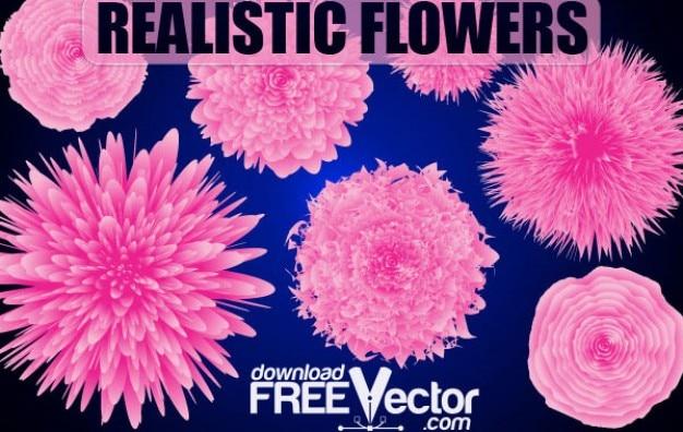 Fleurs vecteur libre réaliste