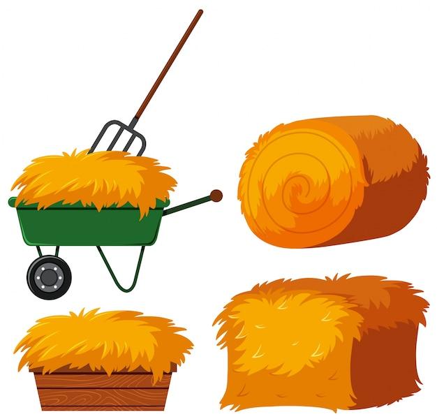 Foin sec dans le seau et le wagon
