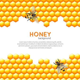 Fond abeille