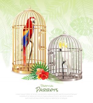 Fond d'affiche de marché aux oiseaux