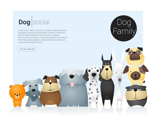 Fond animal avec des chiens