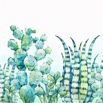 Fond d'aquarelle de cactus
