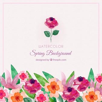 Fond aquarelle de printemps