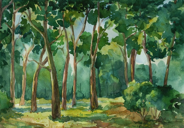 Fond aquarelle vert forêt profonde