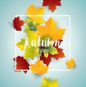Fond d'automne avec des feuilles d'érable colorées