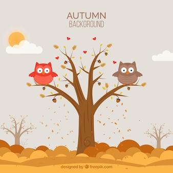 Fond d'automne avec des hiboux