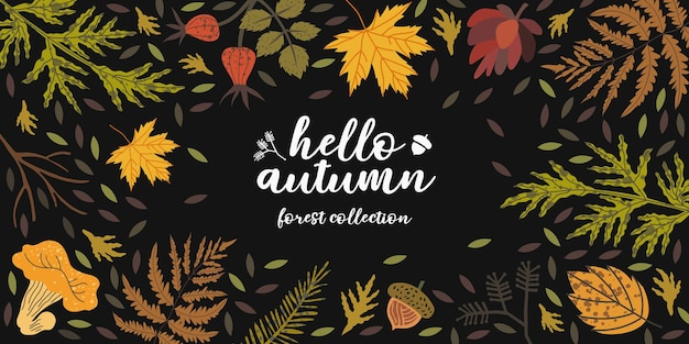 Fond d'automne vectoriel avec des éléments floraux pouvant être utilisés comme flyer, bannière, page de destination, affiche pour la nouvelle collection d'automne ou la vente. ensemble d'illustrations de forêt ou de récolte.