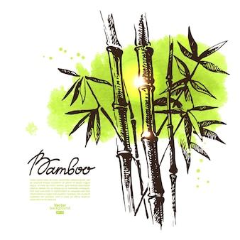 Fond avec bambou de croquis dessinés à la main et tache d'aquarelle. illustration vectorielle