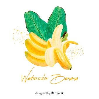 Fond de banane aquarelle