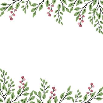 Fond blanc avec bordure de plantes sauvages roses