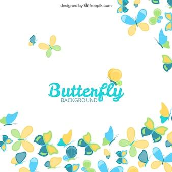 Fond blanc avec des papillons plats