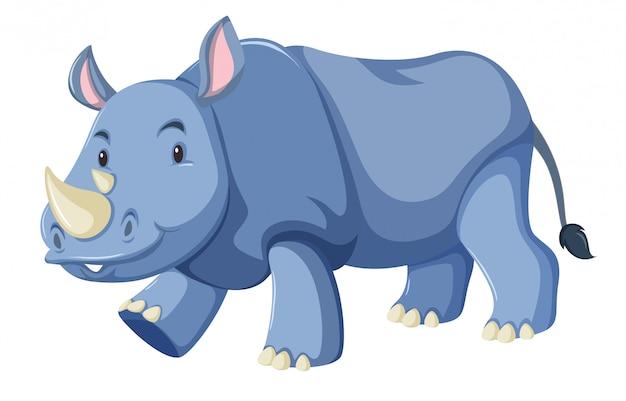 Fond blanc rhino bébé mignon