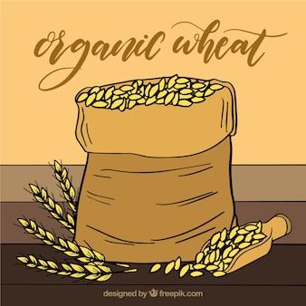 Fond de blé dessiné à la main