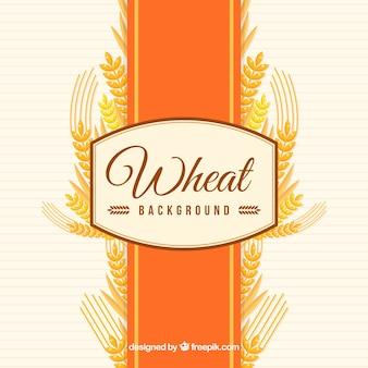 Fond de blé plat