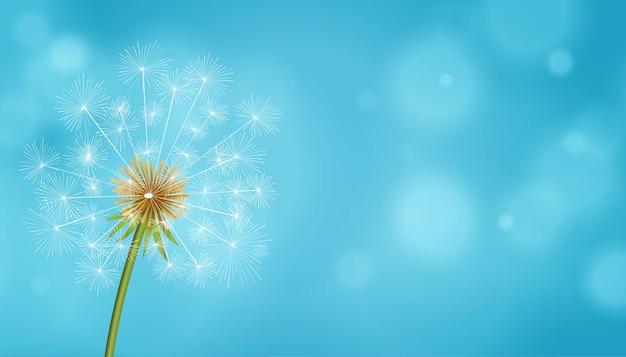 Fond bleu de fleur de graines de thé de pissenlit