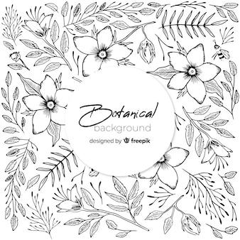 Fond botanique dessiné main vintage