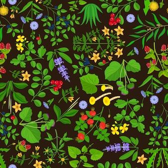 Fond botanique de fleurs sauvages et d'herbes