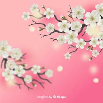 Fond de branche de cerisiers en fleurs
