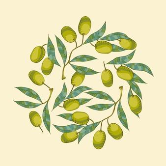 Fond avec branche d'olivier et olive verte