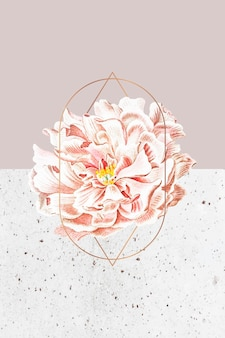 Fond de cadre de pivoine en fleurs