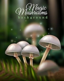Fond de champignons magiques