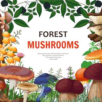 Fond de champignons sauvages forestiers