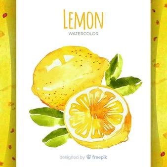 Fond de citron dessiné main aquarelle