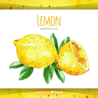 Fond de citron dessiné main aquarelle