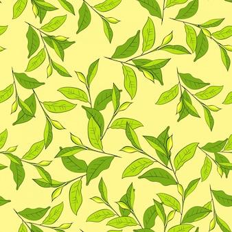 Fond coloré avec des feuilles.