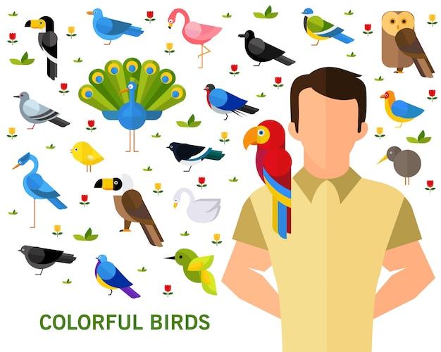 Fond de concept d'oiseaux colorés.