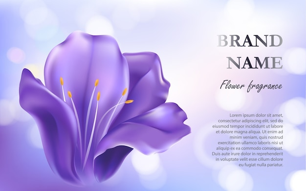 Fond cosmétique avec une fleur pourpre