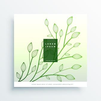 Fond de belles feuilles dessinées à la main
