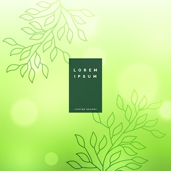 Fond de feuilles vertes avec effet bokeh doux