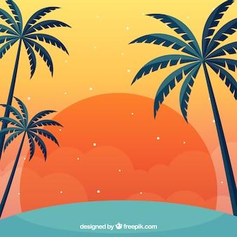 Fond de l'été avec le coucher du soleil et les palmiers