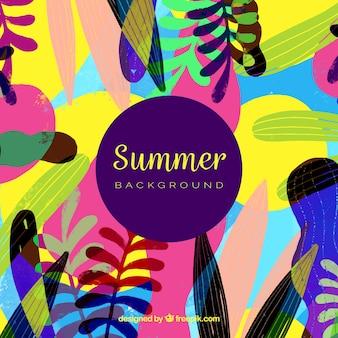 Fond de l'été avec des plantes colorées
