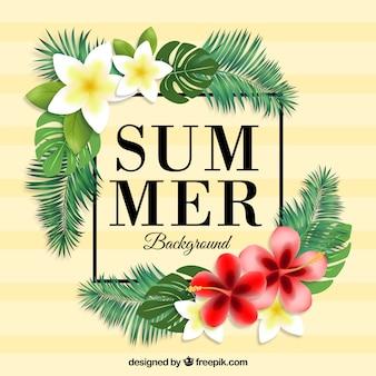 Fond d'été tropical avec des fleurs