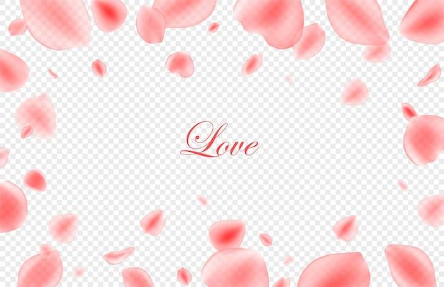 Fond festif de la saint-valentin. pétales de roses roses réalistes sur fond transparent. .