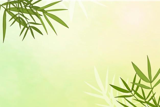 Fond de feuille de bambou