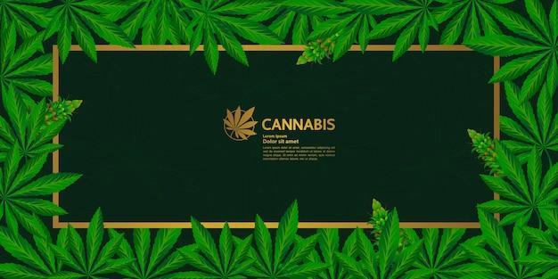 Fond de feuille de cannabis élégant.
